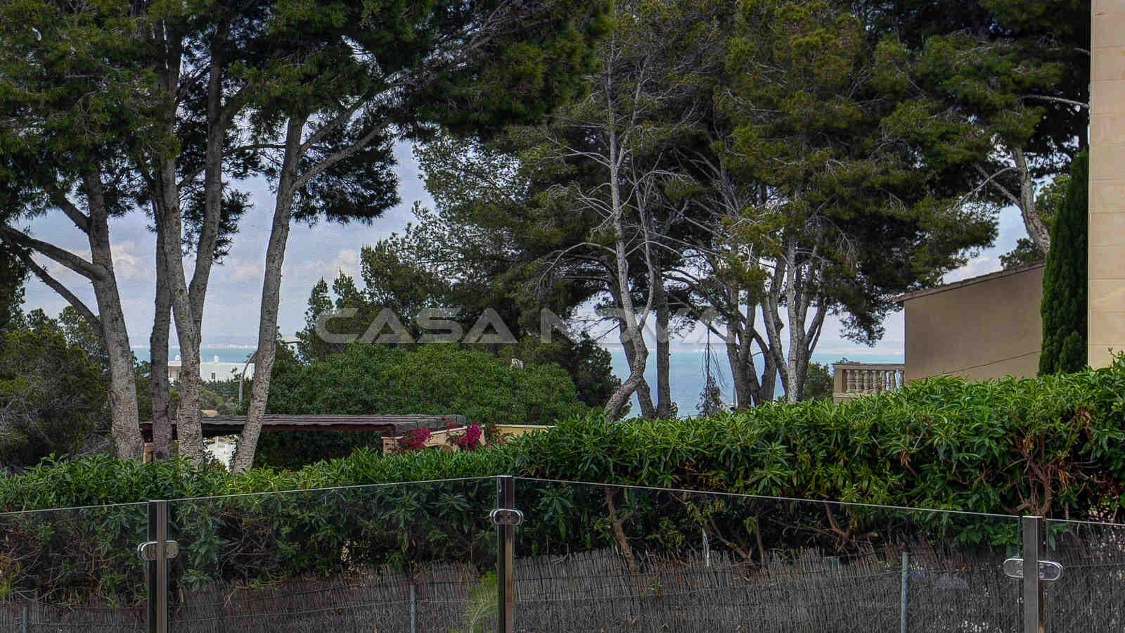 Wundervoller Ausblick von der Immobilie auf die Grünzone und das Meer