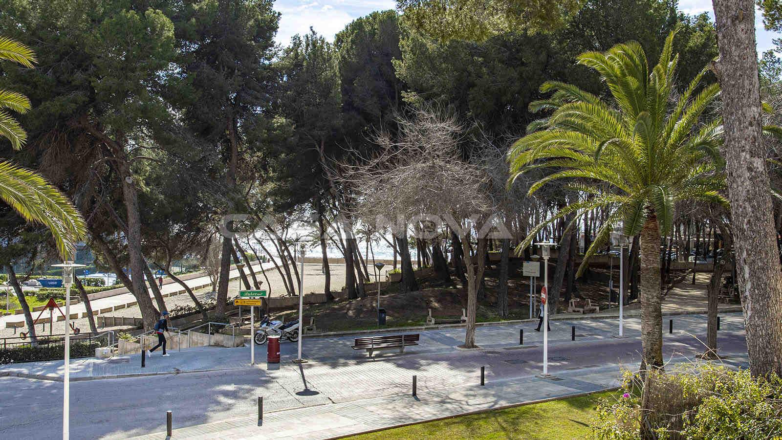 Blick auf die Promenade, Grünzone und aufs Meer