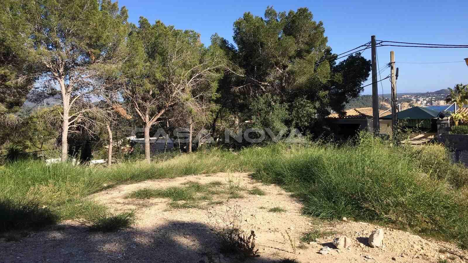 Top Baugrundstück in erhöhten Lage in Paguera