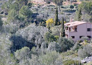 Idyllische Finca Mallorca in herrlicher Natur