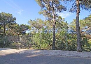 Tolles, voll erschlossenes Baugrundstück in Strandnähe