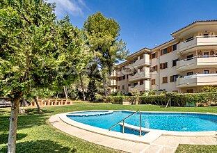 Top Angebot: Hübsches Penthaus Mallorca in zentraler Lage